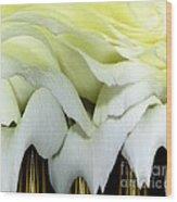 White Rose Polar Coordinates Wood Print