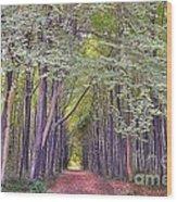 Whitwell Wood Wood Print