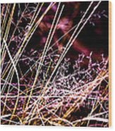 Wild Grasses Abstract Wood Print