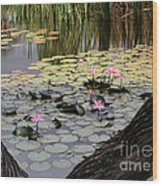 Wild Water Lilies In The River Wood Print