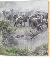 Wildebeest Migration 1 Wood Print