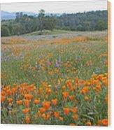 Wildflower Wonderland 10 Wood Print