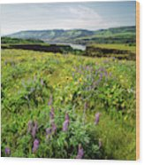 Wildflowers In A Field, Columbia River Wood Print