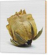Wilted Rose Wood Print