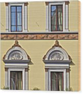 Windows Of Tuscany Wood Print