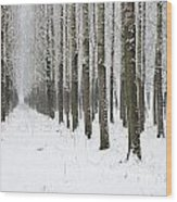 Winter Alley Wood Print