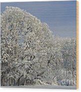 Winter In Oregon Wood Print