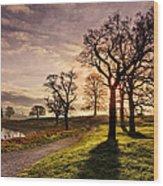 Winter Morning Shadows / Maynooth Wood Print