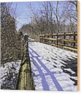 Winter On Macomb Orchard Trail Wood Print