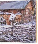 winter Russia Wood Print