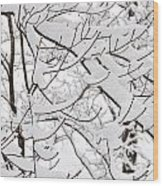 Winter Snow Scene In New England Wood Print