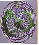 Wisteria Orb Wood Print
