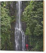 Woman With Umbrella At Wailua Falls Wood Print