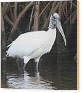 Wood Stork In The Swamp Wood Print
