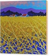 Yellow Meadow Wood Print by John  Nolan