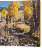Yellowstone Institute In Lamar Valley In Yellowstone National Park Wood Print