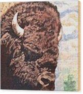 Young Bull At Yellowstone Wood Print