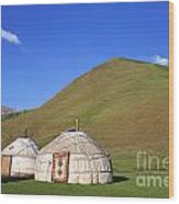 Yurts In The Tash Rabat Valley Of Kyrgyzstan  Wood Print