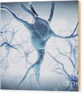 Neurons Wood Print