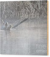 Northern River Otter Wood Print