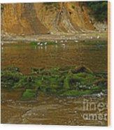 Sunset Bay State Park Wood Print