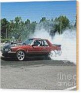 2003 07-06-14 Esta Safety Park Wood Print