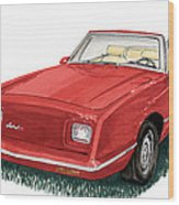 2006 Studebaker Avanti Wood Print