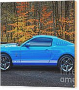 2010 Shelby Gt500 Wood Print