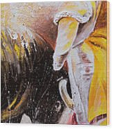 2010 Toro Acrylics 03 Wood Print