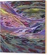 2011111902 Wood Print