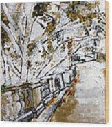 2013 007 Road To The Arlington Memorial Bridge Wood Print