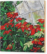 2013 010 Poinsettias And Dots Conservatory At The Us Botanic Garden Washington Dc Wood Print