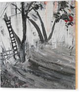2013 058 Tree And Ladder Alexandria Virginia Silver Black White Red Wood Print