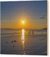 2014 03 02 01 Ft Walton Beach Fl Wood Print