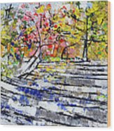 2014 19 Silver And Blue Stairs To Pink And Yellow Woods Srpsko Sarajevo Wood Print