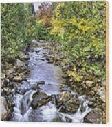 201409290-050 Hudson River Origin 2x3 Wood Print