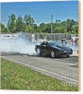 2068 07-06-14 Esta Safety Park Wood Print