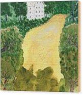 21 Room House On Golden Lake Dream Wood Print