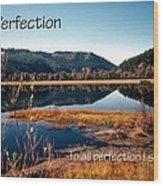 21042 Perfection 2 Wood Print