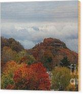 217a Wood Print