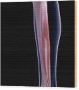 Leg Muscle Wood Print