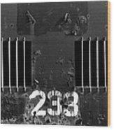233 Wood Print