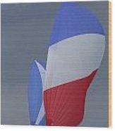 All Sail Wood Print