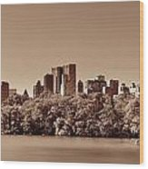 Central Park Autumn Wood Print
