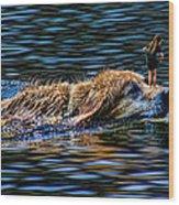 2460 Wood Print