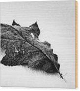 Wind Dancer Wood Print
