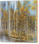 2501 Wood Print