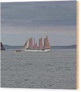 Maine Seascapes Wood Print