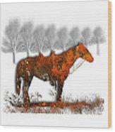 2610 Wood Print