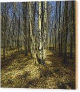 2611 Wood Print